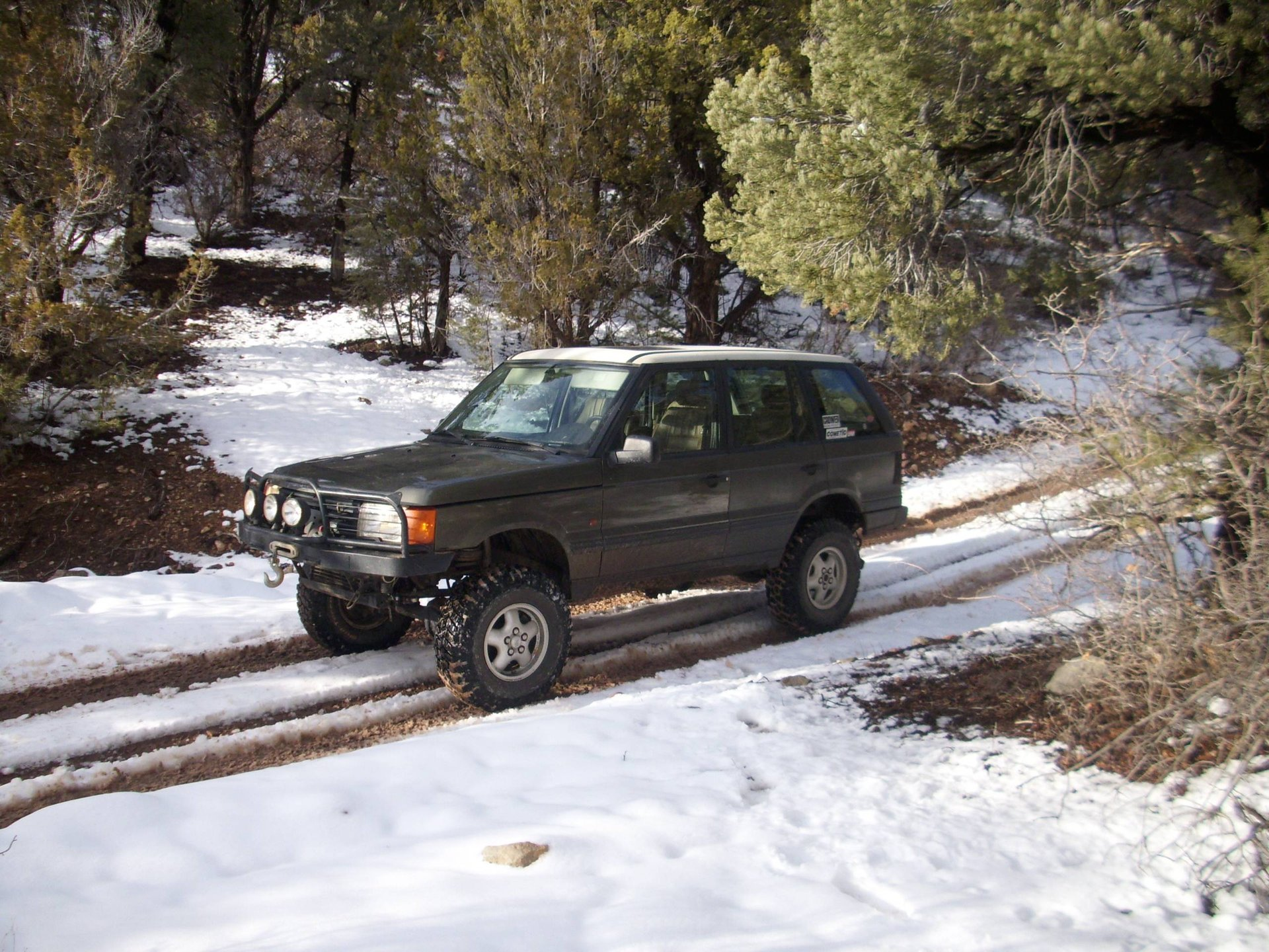 Off-Road Suspension Set-up Guides and Pictures (Coil Springs